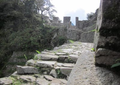 Walk Way - Machu Picchu