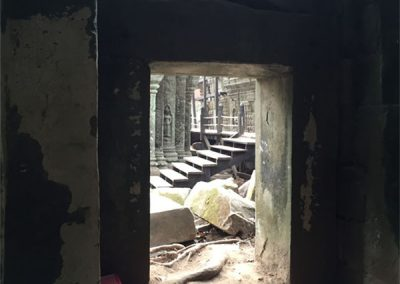 Ta Pro - Angkor Wat 3